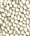 White pea bean