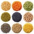Top Quality Green/Red/Brown/Yellow/Black Lentils