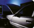 Automotive Protection Film