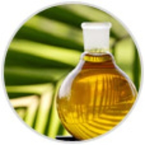 S&M Palm oil Exporting Services., Kuala Lumpur
