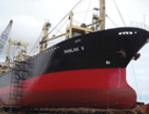 Order INTERNATIONAL SHIPPING