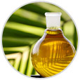 Order S&M Palm oil Exporting Services