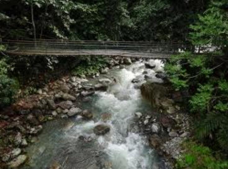 Order Kinabalu National Park / Poring Hot Spring