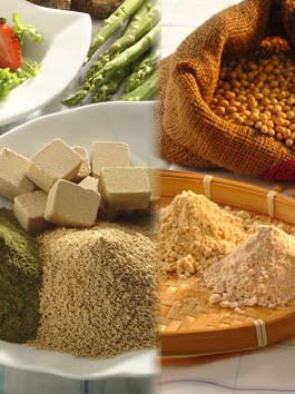 Provide Premium Quality Food Additive, Seasoning, Stock and Ingredients