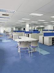 Interior Design and Renovation