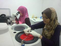 Microscopy lab service