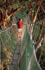 Kinabalu National Park / Summit Trail