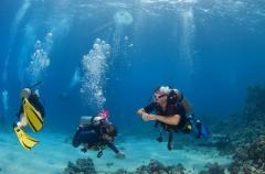 Discover Scuba Diving (Non-Licensed Diver)