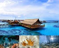 Sipadan Island Tour