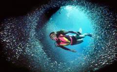 Leisure Dive (Licensed Diver)